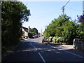 TM2494 : B1527 Bungay Road, Hempnall by Adrian Cable