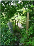 SE0813 : Footbridge on the Colne valley Circular Walk by Humphrey Bolton