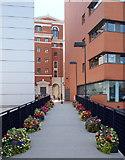 SP0686 : Brunswick Street, Birmingham by David Hallam-Jones