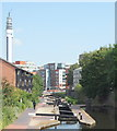 SP0687 : Louisa Street Vicinity, Birmingham by David Hallam-Jones