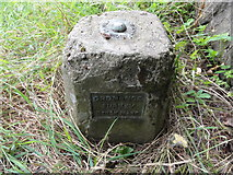 NS6065 : Ordnance Survey Fundamental Bench Mark by Mat Tuck