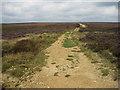 SE7291 : Wide open spaces by Pauline E
