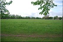 TQ2869 : Figge's Marsh by N Chadwick