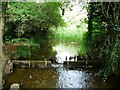 TL0748 : The Leat, upstream of a footbridge by Christine Johnstone