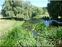 TR0650 : Great Stour and its water meadows at Godmersham by Marathon