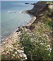 NZ9011 : Coastal scenery, Whitby by Pauline E