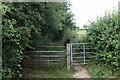 SP9945 : Bridleway by Wootton Woods by Philip Jeffrey