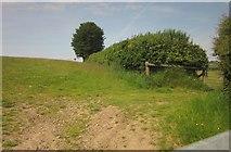 SS8928 : Field boundary just in Exmoor by Derek Harper