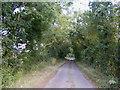 TM1082 : Darrow Wood Lane, Bressingham by Adrian Cable