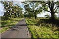 SJ5963 : Tree-line road near Oultonlowe Farm by Philip Halling