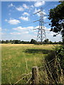 SP9943 : Pylon in the pasture by Philip Jeffrey