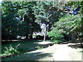 SZ0692 : Northern end of Upper Gardens by Paul Gillett