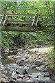 NZ9007 : Rigg Mill Beck by Mick Garratt