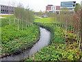 SP0177 : River Rea Longbridge (2) by Roy Hughes