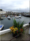 SC2667 : View across the harbour from the Castle Arms by Richard Hoare