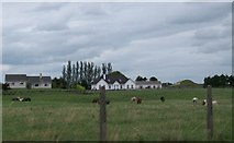 N2721 : Recently built farmhouse north of the N52 at Bunaterin, Co Offaly by Eric Jones
