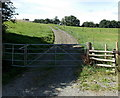 SO0253 : Track through a Builth Road field by Jaggery