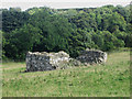 NU2519 : Ruined building in a field near Craster Tower by Graham Robson