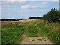 NU2420 : Public footpath north of Dunstan by Graham Robson