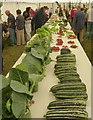 SJ1901 : Vegetables at Berriew Show by Penny Mayes