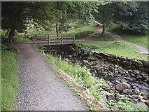 NU0702 : Footbridge over the Debdon Burn, Cragside by Stanley Howe