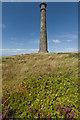 SN5880 : Wellington Monument by Ian Capper