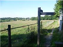 TQ1662 : Footpath near Chessington World of Adventures by Marathon