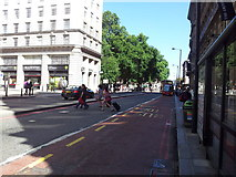 TQ2879 : Buckingham Palace Road looking north by Helen Steed