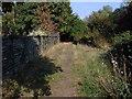 TQ0074 : Footpath, Wraysbury by Alan Hunt