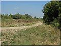 TQ0074 : Gravel pit road by Alan Hunt