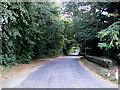 TM0980 : Hall Lane, Baynard's Green by Adrian Cable