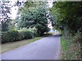 TM0980 : Baynard's Lane, Baynard's Green by Adrian Cable