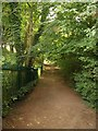 ST6376 : Path near Oldbury Court by Derek Harper
