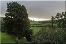 SO1252 : Early morning in Cregrina, Powys by Christine Matthews