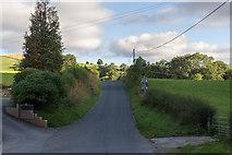SO1252 : Road near Cregrina Bridge over the River Edw by Christine Matthews