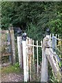 ST1220 : Kissing gate beside the railway line at Westford by David Smith