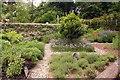 ST2428 : The herb garden by Hestercombe Gardens by Steve Daniels