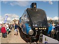 SK9135 : 4468 Mallard at Grantham by David Dixon