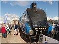SK9135 : 4468 Mallard at Grantham by David Dixon