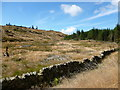 NX7855 : Drystane dyke and clear-felled forestry by Alan O'Dowd