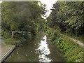 SK8833 : Grantham Canal, Harlaxton Cutting by David Dixon