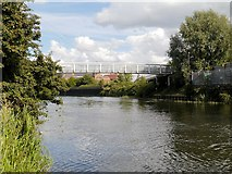 SK7954 : River Trent, Jubilee Bridge at Newark by David Dixon