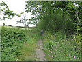 SV9111 : The Holy Vale Trail from Longstone by John Rostron