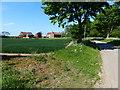 TF5724 : Newmarsh Farm near Ongar Hill by Mat Fascione