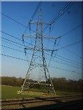 SK1409 : Pylon by the West Coast Main Line by N Chadwick