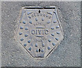 ST5422 : Manhole cover, Limington by Rossographer