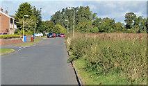 J4569 : Castlelodge Park, Comber by Albert Bridge