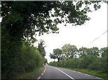 N6468 : The N52 approaching the village of Clonmellon, Co Westmeath by Eric Jones