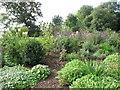SO8845 : Croome Park, herbaceous border with verbena bonariensis by David Hawgood