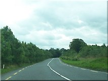 N1034 : View south along the N62 a mile or so north of Ballynahown by Eric Jones